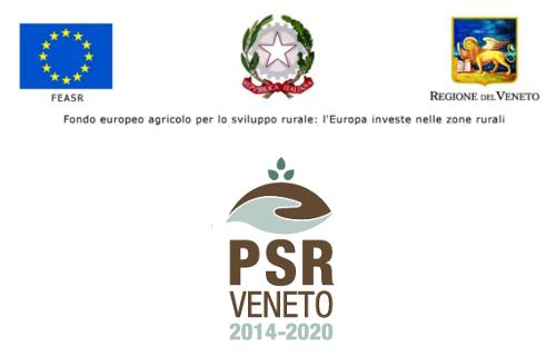Fondo europeo agricolo - Psr Regione Veneto